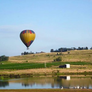 Hunter Valley Hot Air Balloon Flight with breakfast