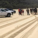 Learn beach driving with our Sand Driving Course at Noosa.