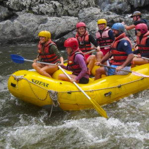 Whitewater Rafting Nymboida River, Coffs Harbour, 1 Day