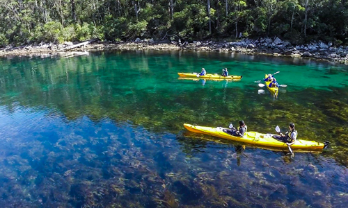 Kayaking in one of the many sheltered bays near Hobart.